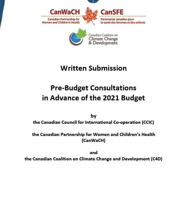 Pre-budget consultations in advance of the 2021 budget