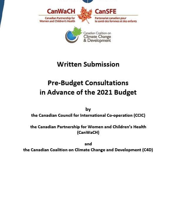 Consultations prébudgétaires – budget de 2021