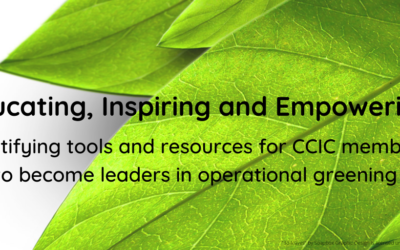 Top 10 Greening Tools for the International Co-operation Sector
